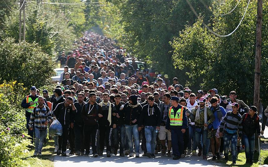 refugee_3448982k